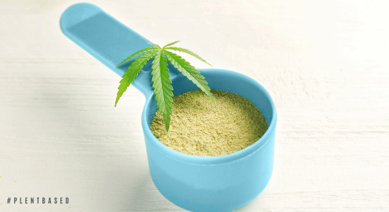 Scoop of high quality hemp protein