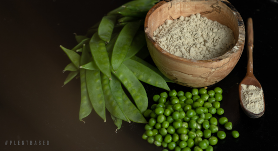 High quality pea protein from plent