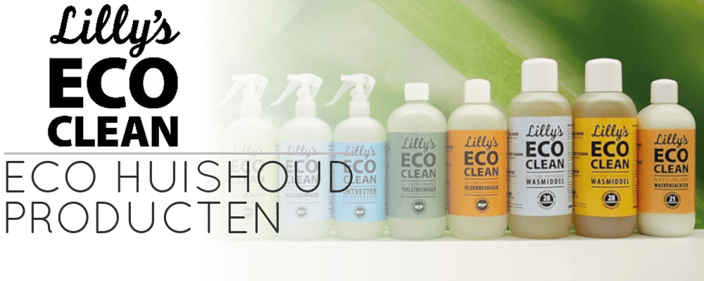 lilly's eco clean