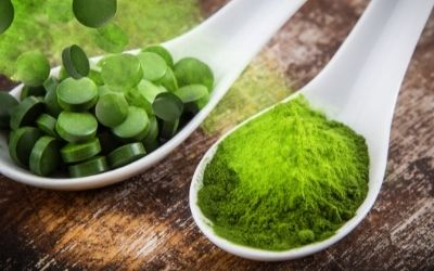 Chlorella – A superfood that can sustain a population?